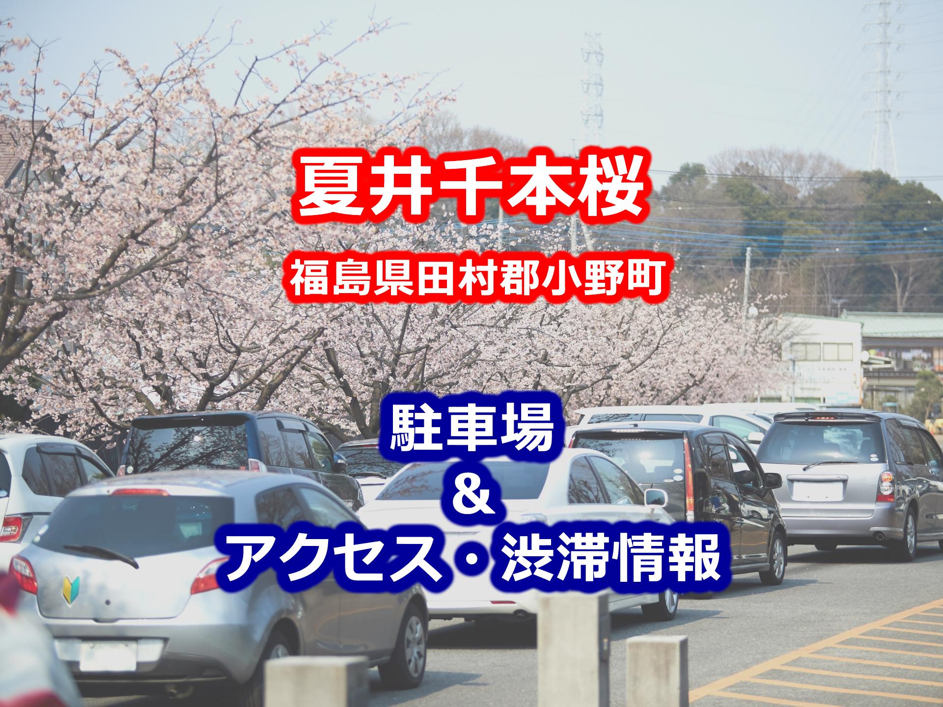 夏井千本桜周辺の無料・有料駐車場と地図・電車&車のアクセスや渋滞方法一覧まとめ