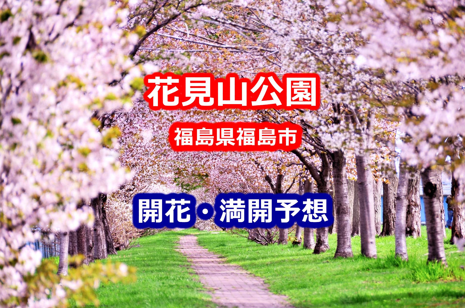 2020年花見山公園(福島市)の桜開花・満開予想・開花状況まとめ