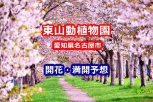 2020年東山動植物園の桜開花・満開予想!