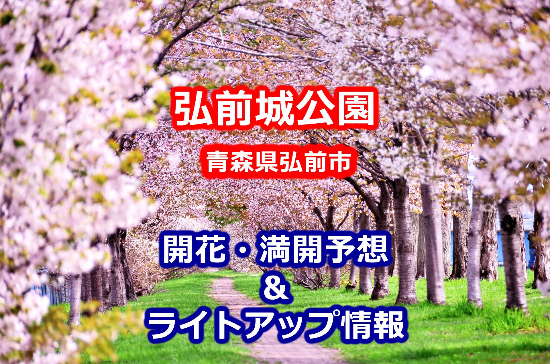 2020年弘前城公園の桜の開花・満開予想と弘前さくらまつり期間・ライトアップの時間