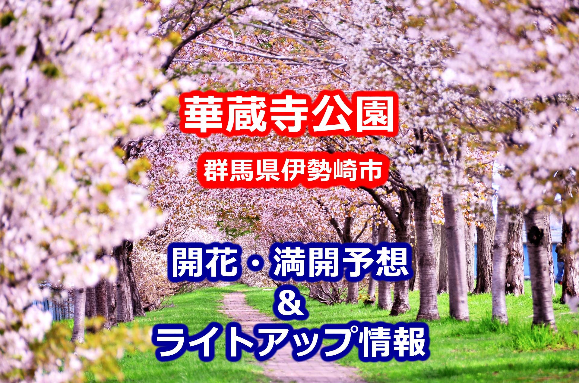 2020華蔵寺公園桜開花・満開予想とライトアップ情報