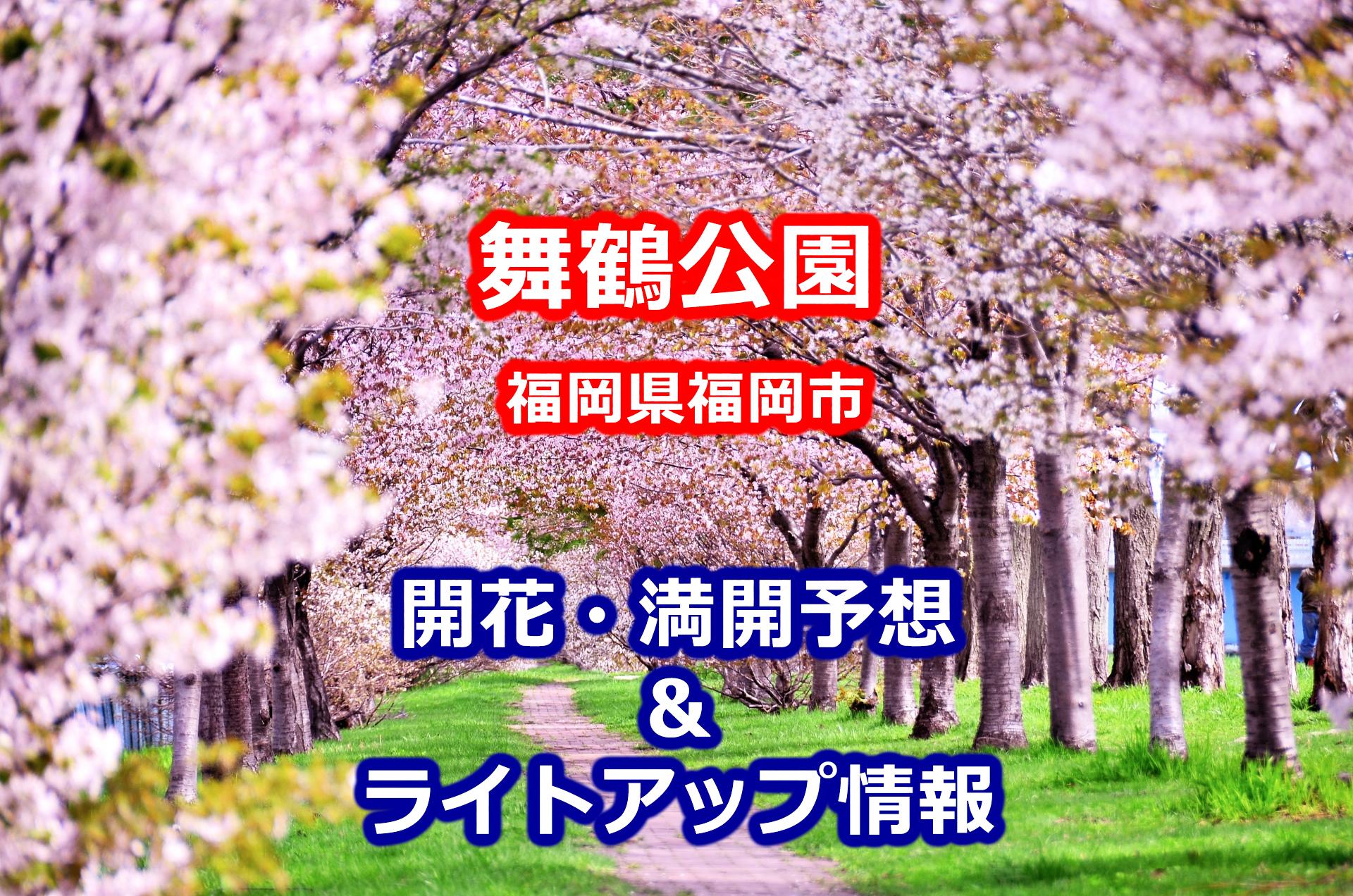 2020年舞鶴公園の桜開花・満開予想と福岡城さくらまつり・ライトアップの期間・時間
