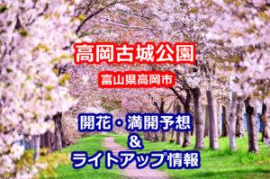 2020年高岡古城公園の桜開花・満開予想とライトアップ情報