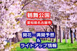 2020鶴舞公園の桜開花・満開予想とライトアップ情報