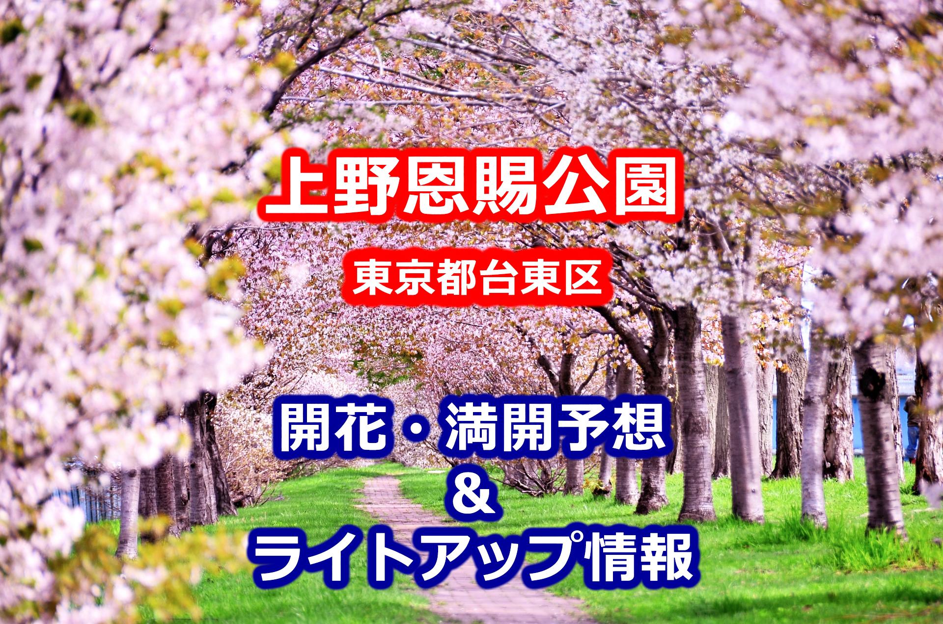 2020年上野恩賜公園の桜開花・満開予想とライトアップ情報