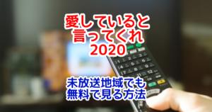 愛していると言ってくれ2020特別版の放送日程と放送地域は?関東以外の人が視聴する方法も!