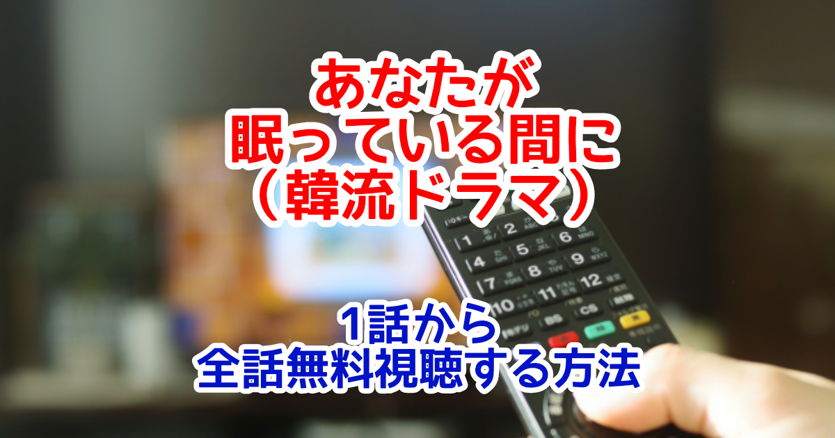 あなたが眠っている間に(韓国ドラマ)字幕付きフル動画配信を1話から全話無料視聴する方法